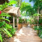 Tranquilseas Eco lodge - nestled into the tree top canopy of Roatan