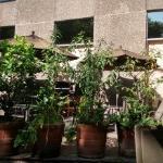 Mesas en la terraza del hotel