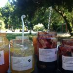 Delicious jams for breakfast that raise funds for a dog shelter