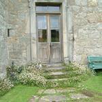 Garden steps