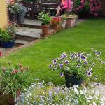 Lovely quiet garden
