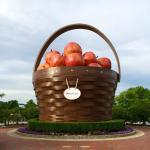 World's Largest Apple Basket!