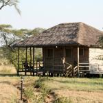 Photo de Ikoma Safari Camp