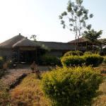 Photo de Ikoma Safari Camp