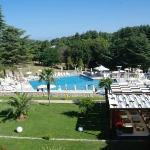 Hotel Mediteran Pool Area