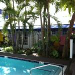 picture of pool looking TO our room.(purple wall)