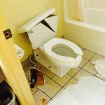 The toilet that exploded.