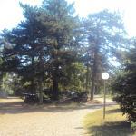 Panorama 1877 ve Çevresi