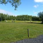 The camping site