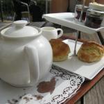 Devon cream tea for one