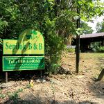 Photo de Sepilok B&B
