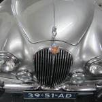 Jaguar in shining silver