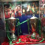 Heineken cups