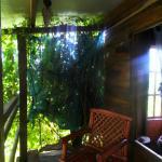 recamara 2, Mariposa treehouse