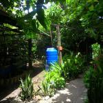 agua lluvia - rain water tank