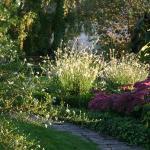 vue de notre beau jardin