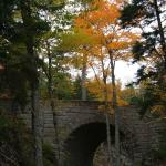 Stone Bridges in Acadia