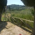 Photo de Romanelli Agricola