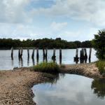 Foto de Cedar Keys National Wildlife Refuge