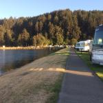 Photo de Winchester Bay RV Resort