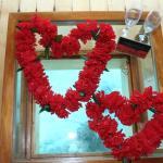 Wedding Vow Renewal 2015