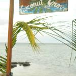 Coconut Grove Beachfront Cottages Foto