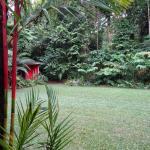 Foto di Daintree Rainforest Retreat