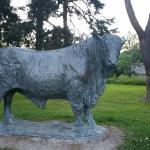 local prize bull captured in bronze