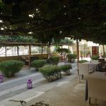 Φωτογραφία: Hotel Alba