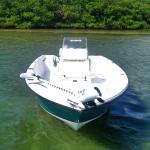 The Bay Boat