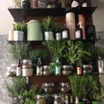 Botanic, bitter, 250 gin, 30 varietà di acqua tonica