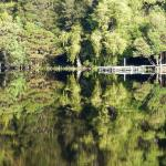 Reflections abound on the Gordon River cruise