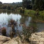 Photo of Villa Patrizia sul lago