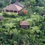 Eco Lodge from above