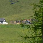 Walderhütte Wöllanernock