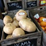 Organic Jicama