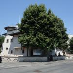Muzeul Zambaccian, Bucuresti