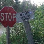 Stop sign just before the cabin!