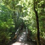 Foto de Paradise Valley Campground