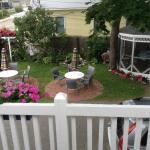 Ensemble patio et cour arrière
