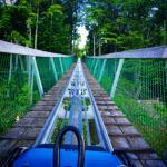 Ridge Runner Mountain Coaster Foto