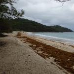 Macaroni Beach Foto