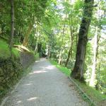 Photo de Parque Aiete