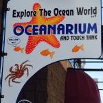 Explore the Ocean World