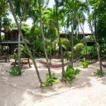 Island Pearl Courtyard