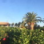 Foto de Lantana Hotel & Residence