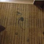 stains on carpet, more than these, just selected these to show