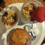 Fresh Fruit Yogurt w Granola and Blueberry Muffin