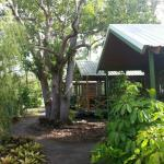 Queenslander Cabins