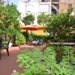 The garden patio at hotel Astoria